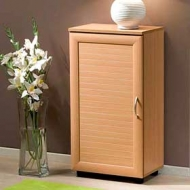 Шкаф обувной Бона-3